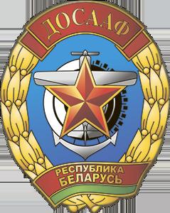 Слонимская РОС ДОСААФ 1